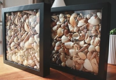 Ideas para decorar con conchas marinas